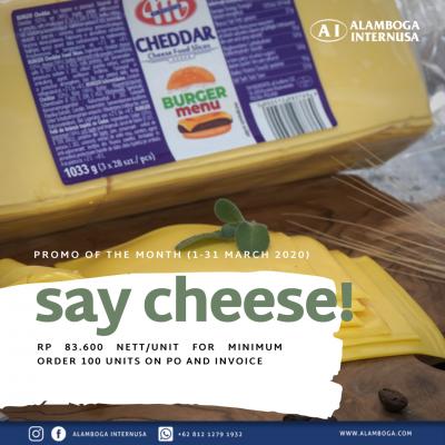 Say Cheese! (Square_Still)_Mlekovita Coloured Cheddar Burger Slice 1,033 Gram